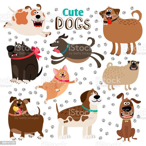 Collection of cute cartoon dogs vector id866491294?b=1&k=6&m=866491294&s=612x612&h=sb6qszqkqvwmmshnm2z3nyeras3p0ezvsi2fcpzlogi=