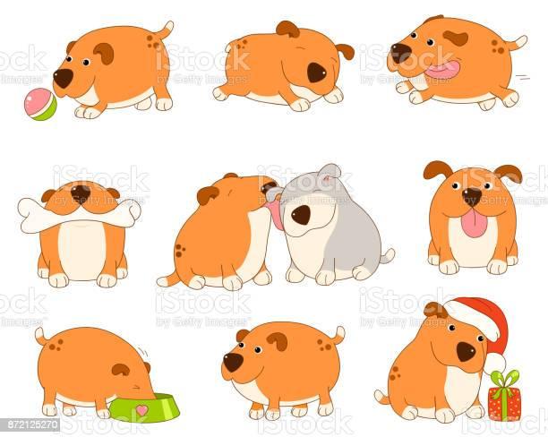 Collection of cute dog vector id872125270?b=1&k=6&m=872125270&s=612x612&h=1q9pigsxsniprvuaskqq9azptz9sblsj8qswksehj4c=