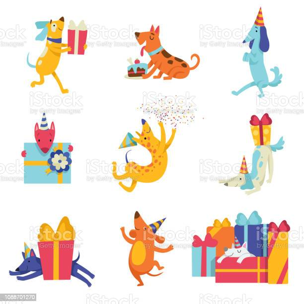 Collection of cute dogs in party hats with gift boxes funny cartoon vector id1088701270?b=1&k=6&m=1088701270&s=612x612&h=hbuckkjht1f6y2f cbn2ljrj4av0mi82k16vecjsbws=