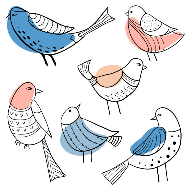 Collection of cute hand drawn doodle birds vector art illustration