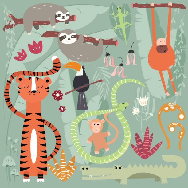 Collection of cute rain forest animals, tiger, snake, sloth, monkey, vector illustration vector art illustration