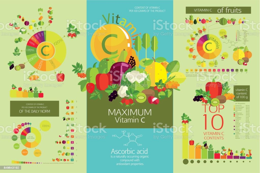 Collection of diagrams vector art illustration