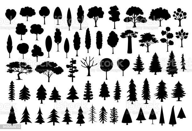 Collection of different park forest conifer cartoon trees silhouettes vector id945065610?b=1&k=6&m=945065610&s=612x612&h=0iks mah 2ffcsy5vkyj kyoh9idwdsl bbx7ant k8=