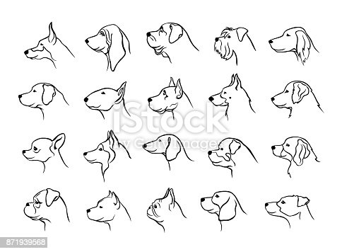 istock collection of dogs heads profile side view portraits silhouettes in black color 871939568
