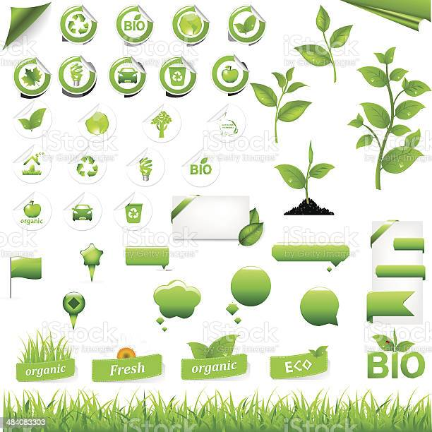 Collection of eco elements vector id484083303?b=1&k=6&m=484083303&s=612x612&h=xrpfvkbrqvyeexgi1chkcqk 2 g8rpcn5cd3xde1umy=
