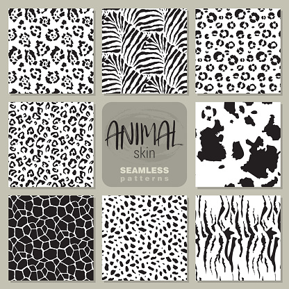 Collection of eight vector seamless patterns with animal skin zebra, leopard, jaguar, giraffe cow.