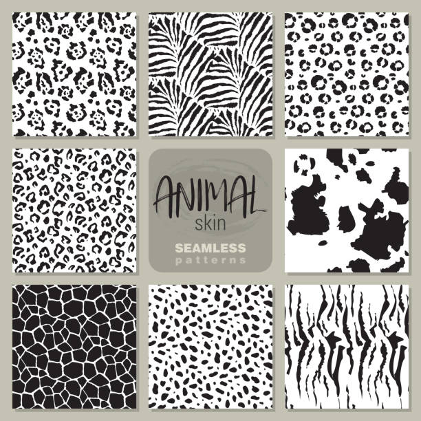 Collection of eight vector seamless patterns with animal skin zebra, leopard, jaguar, giraffe cow. Collection of eight black and white vector seamless patterns with animal skin zebra, leopard, jaguar, giraffe cow. Set of Endless modern background. animal markings stock illustrations