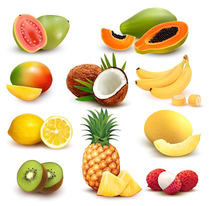 Collection of exotic fruit and berries. Papaya, guava, lemon, banana, mango, coconut, kiwi, guava, melon, pineapple. Vector Set.