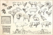 Collection of farm animals on a paper background. Hand drawn vector isolated illustrations.