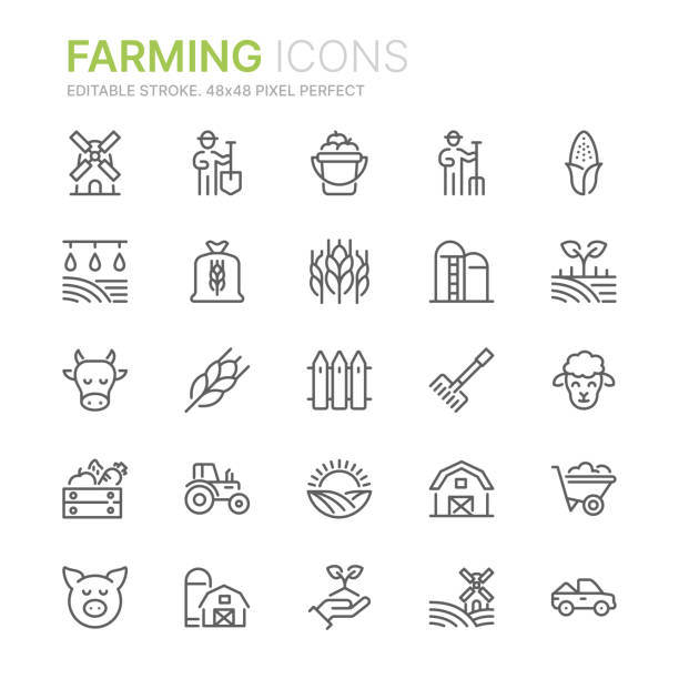 ilustrações de stock, clip art, desenhos animados e ícones de collection of farming related line icons. 48x48 pixel perfect. editable stroke - quinta