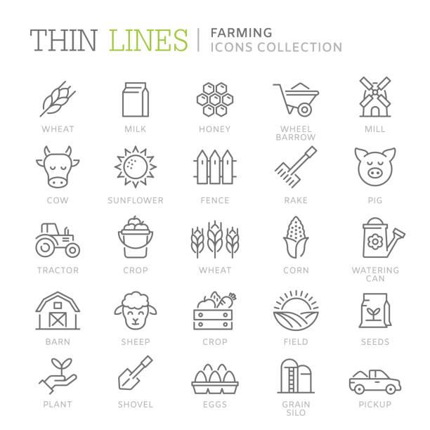 얇은 선 아이콘 농업의 컬렉션 - 농장 stock illustrations