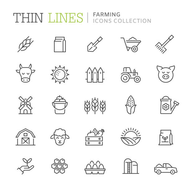 Collection of farming thin line icons Collection of farming thin line icons. Vetor eps 8 corn crop stock illustrations