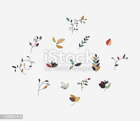 collection of fashion plant pattern