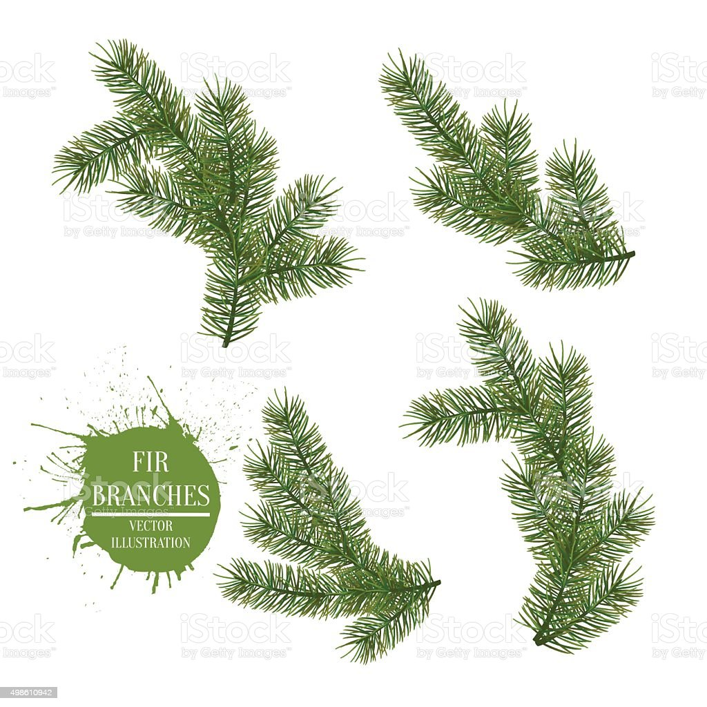 Collection of Fir Branches. Vector Symbol Christmas and New Year vector art illustration