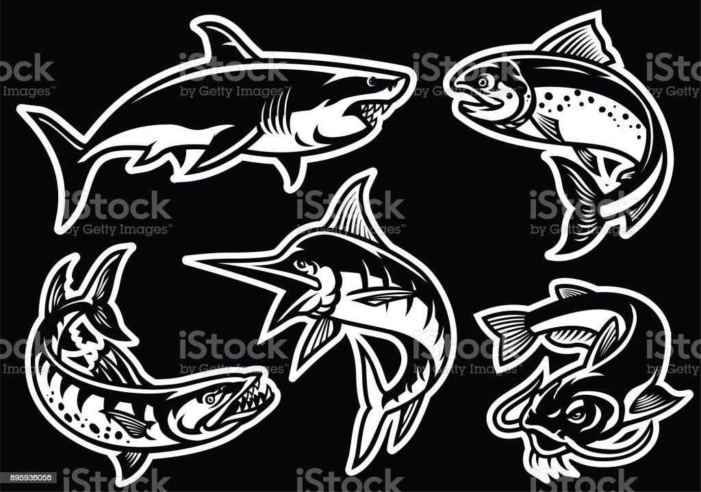 collection of fish in black and white vector art illustration