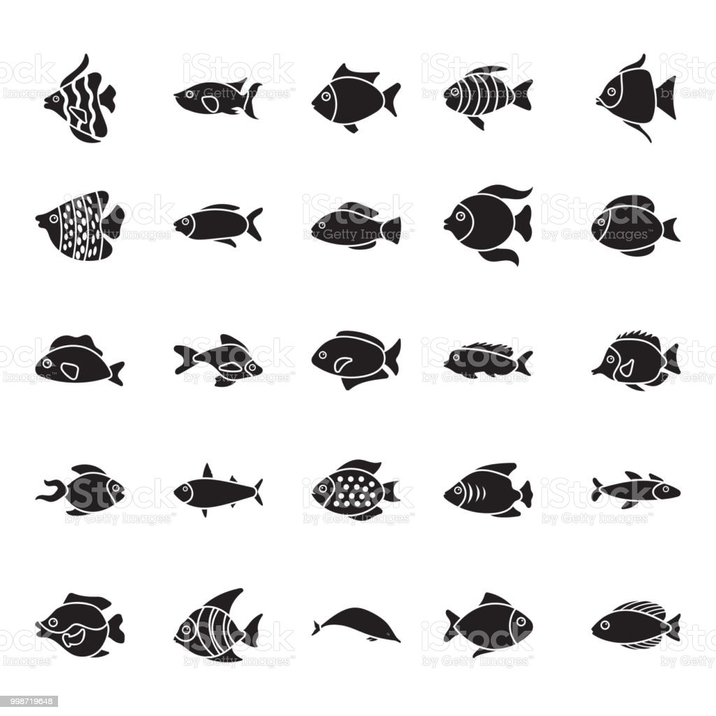 Collection of Fishes Glyph Vector Icons vector art illustration