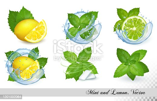 istock Collection of fresh mint and melissa leaves with lemon and lime in splash of water. Vector set 1201002064