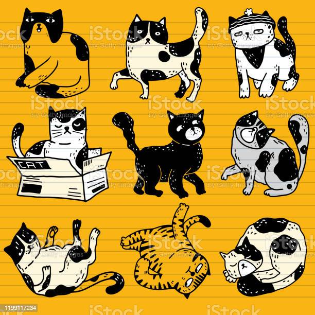 Collection of funny cats action pet animals hand drawn with co vector id1199117234?b=1&k=6&m=1199117234&s=612x612&h=ba9qk1llqi5hmedzwwmm6xl yvr68rjc da3fjv6kzo=