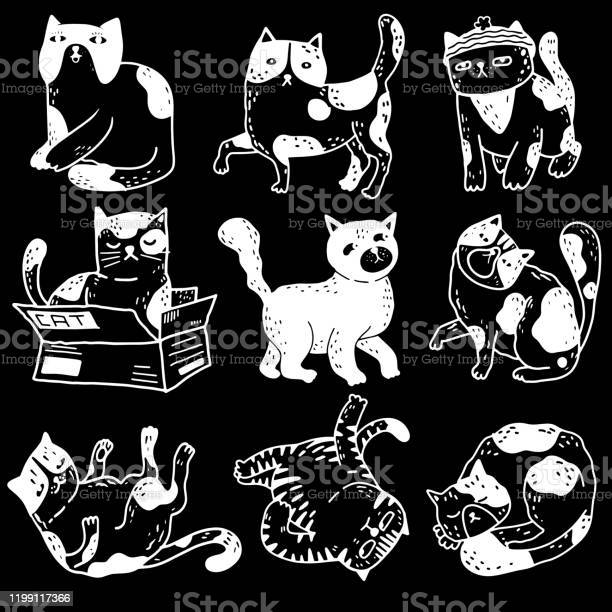 Collection of funny cats action pet animals hand drawn with co vector id1199117366?b=1&k=6&m=1199117366&s=612x612&h=5fxfhswtj8ldz 3hkvaq9phdfk2qqkfycyemoeay5ja=
