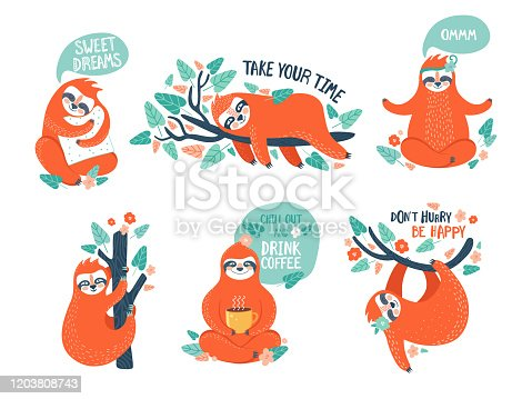 Collection of funny sloths in different postures. Lazy exotic animal sleeping, napping, relaxing on tropical tree branch, meditates and drinks coffee. Cute cartoon character doing daily things