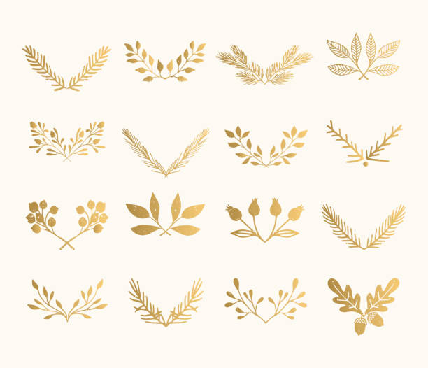 collection of golden flourish dividers. hand drawn isolated borders. foil textured design elements. - gałązka stock illustrations