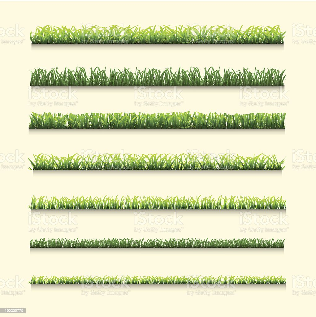 Collection of grass royalty-free collection of grass stock vector art & more images of backgrounds