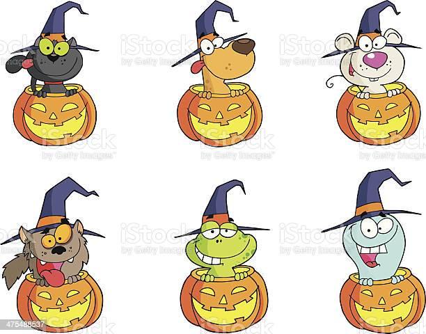Collection of halloween animals in pumpkin 2 vector id475488537?b=1&k=6&m=475488537&s=612x612&h=tcx55jkoze2solp5mrklslsw8ke3zcoywbwqgzk51ks=