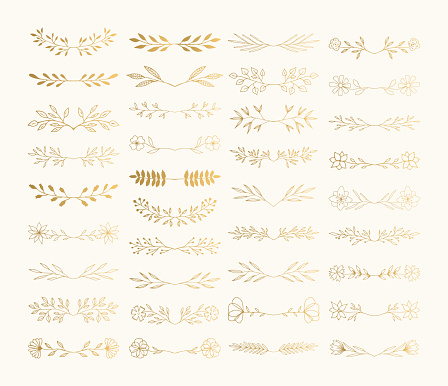 Collection of hand drawn floral dividers and vines for holiday design. Vector isolated.