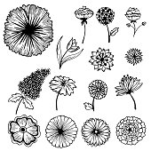 Collection of hand-painted flowers background concept. Vector illustration design