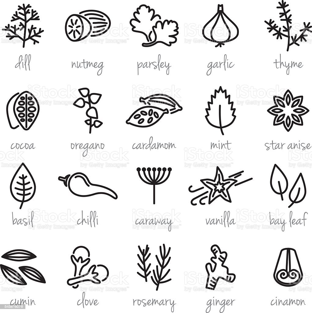 collection of herbs line icons vector art illustration
