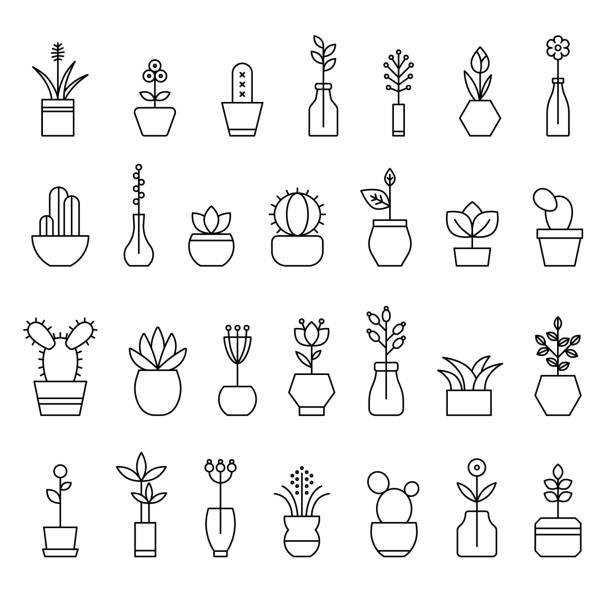 collection of home flowers vector art illustration