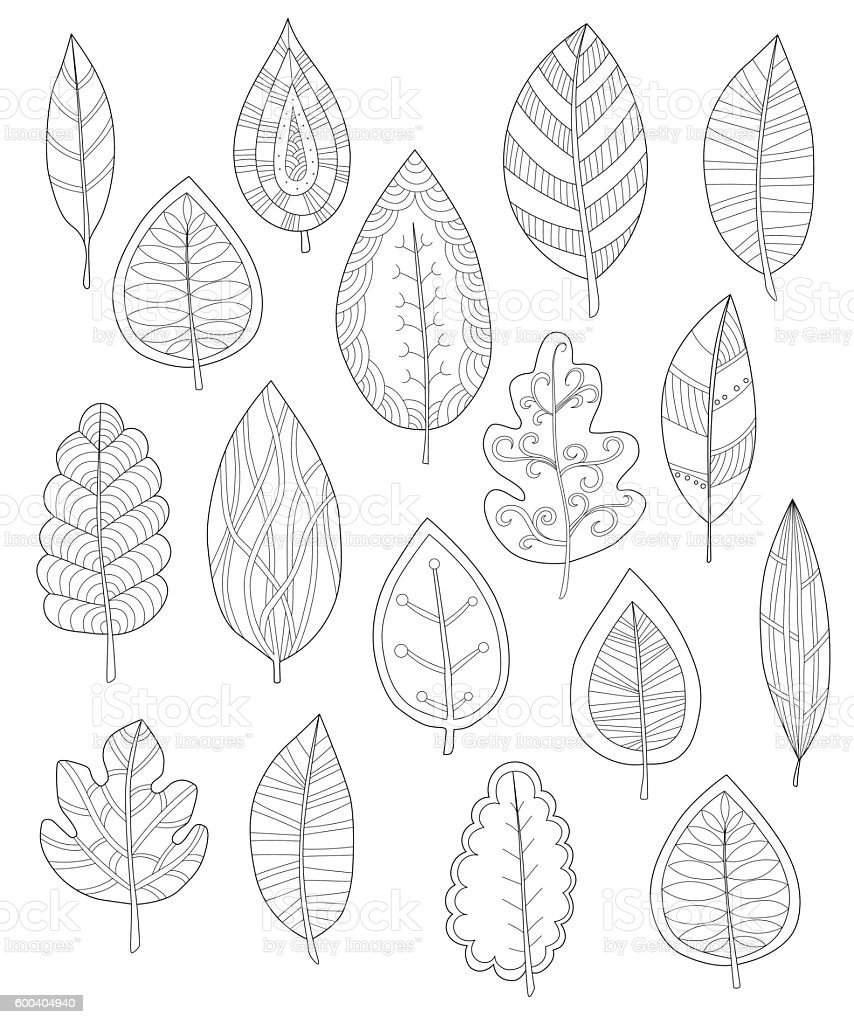 collection of leaves for coloring pages stock vector art 600404940
