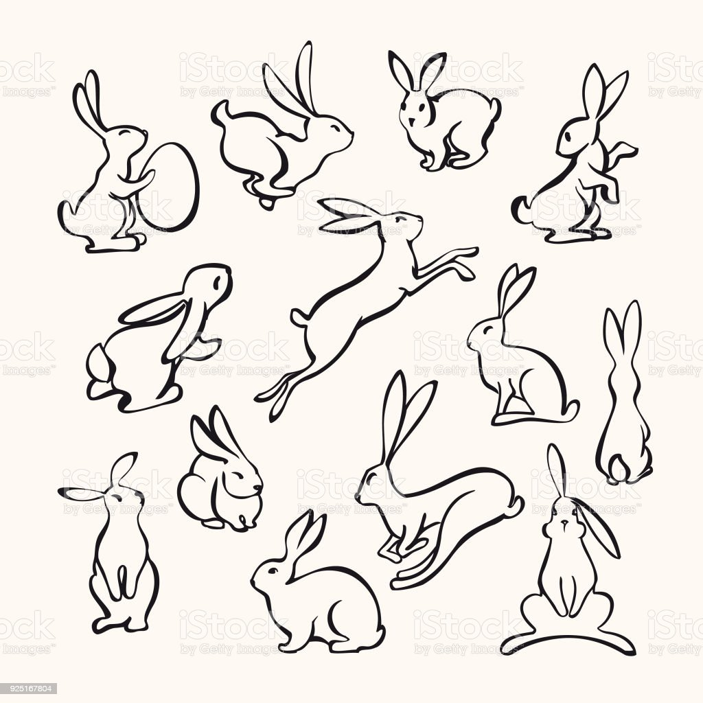 Collection of line art rabbits vector art illustration