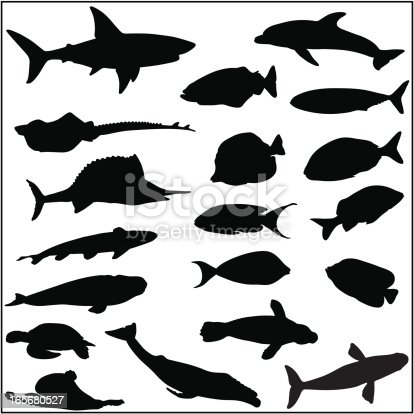 istock Collection of many fish and sea life silhouettes 165680527