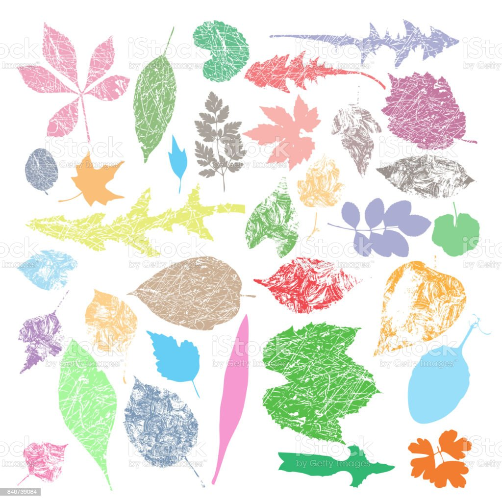 Collection of multicolor Autumn leaf silhouettes, seasonal vector art illustration