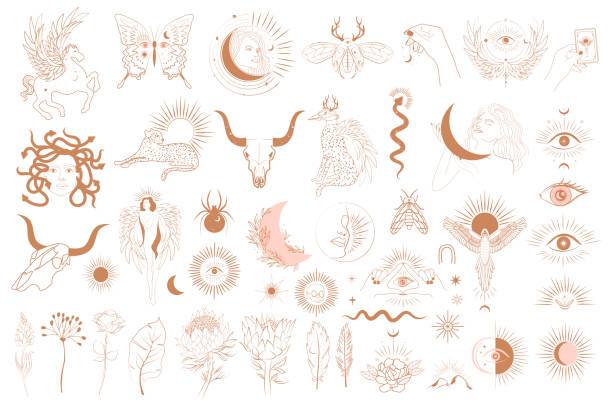 Collection of Mythology objects Collection of Mythology objects, fantasy animals, mythical creature, esoteric and boho objects, woman and moon, snake and evil eye. Minimalistic objects one linestyle. Editable Vector Illustration. snakes tattoos stock illustrations