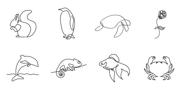 collection of one line logos or icons - chameleon stock illustrations