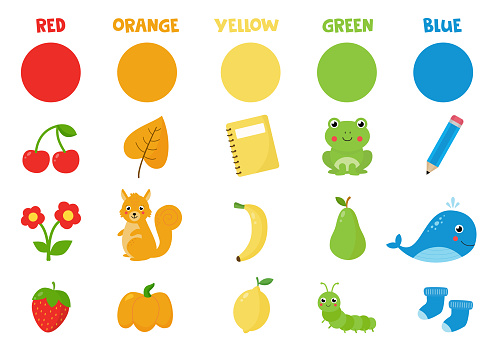 Collection of primary colors. Learning colors. Colorful objects and animals.