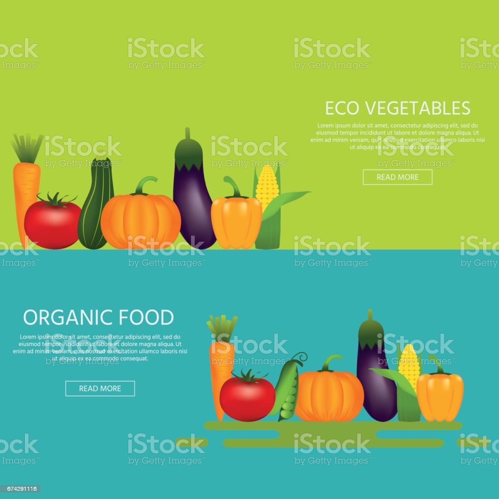 Collection of realistic healthy vegetables vector art illustration