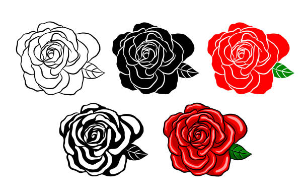 Collection of roses. Silhouette of black, color and shadow style. Vector illustration isolated on white background. Happy Valentine's day. flowers tattoos stock illustrations
