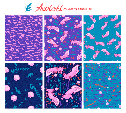 Collection of seamless patterns with axolotl and underwater elements. Vector graphics.