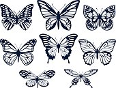 Collection of silhouettes of butterflies. Butterfly icons. Vector illustration.