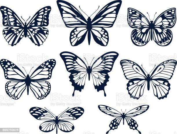 Collection of silhouettes of butterflies butterfly icons vector vector id699259628?b=1&k=6&m=699259628&s=612x612&h=7xcz3z75htei60voyzizekdwowo1dly9sog7sxbdccq=