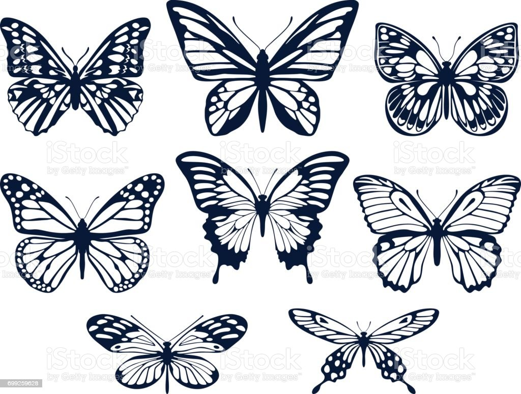 Collection of silhouettes of butterflies. Butterfly icons. Vector illustration. vector art illustration
