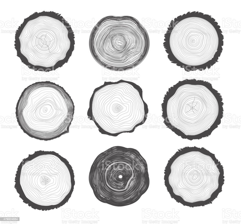 Collection of Tree Rings vector art illustration