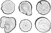 Collection of tree-rings. Vector graphics.