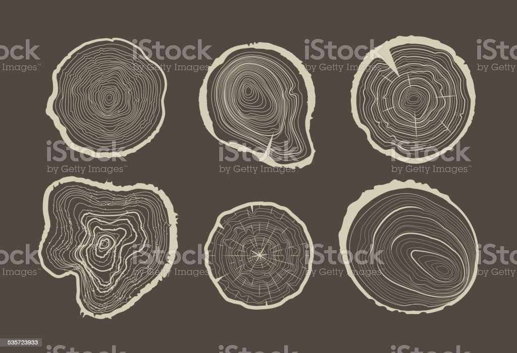 Collection of tree-rings. vector art illustration