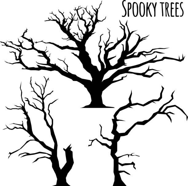 bildbanksillustrationer, clip art samt tecknat material och ikoner med samling av träd siluetter på den vita bakgrunden - fasa