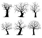 Collection of trees silhouettes. Vector tree isolated on white background