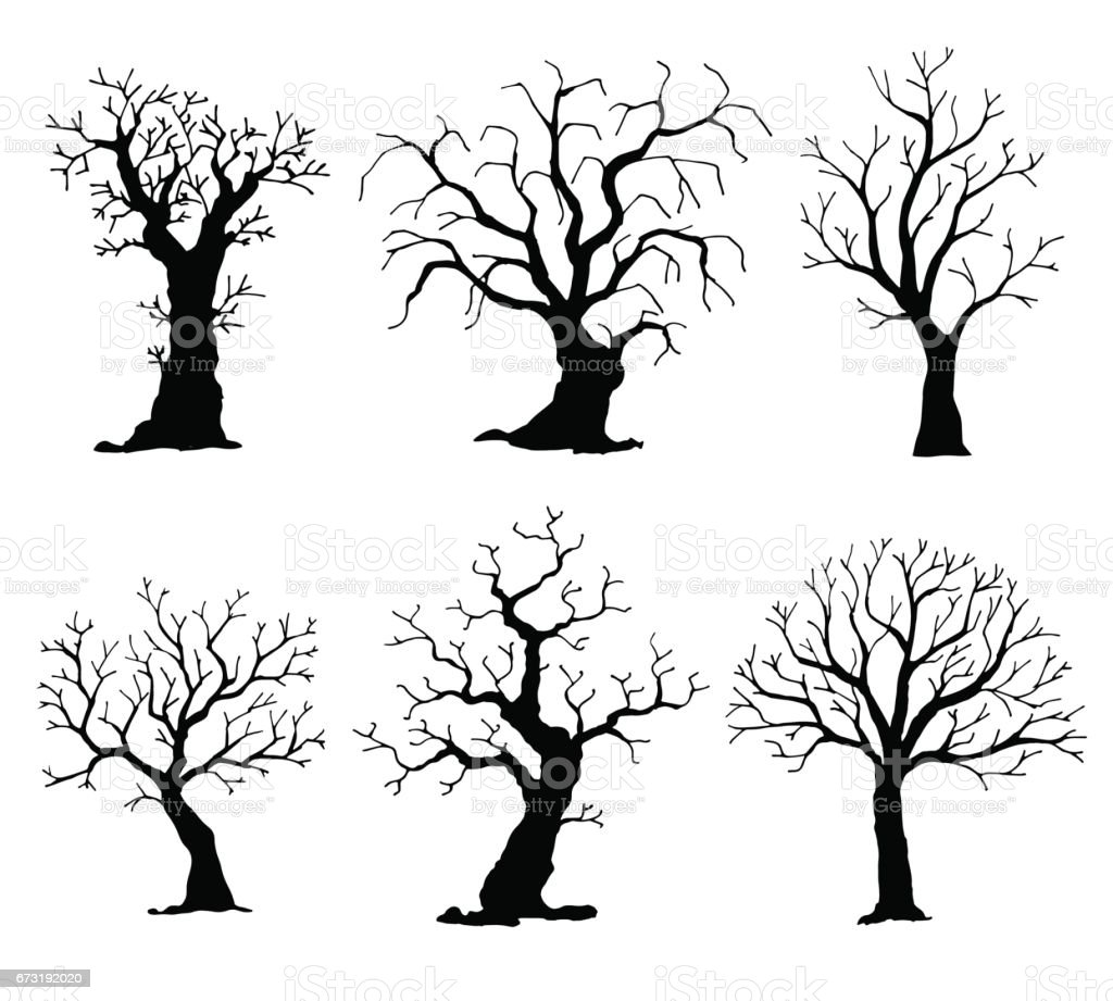 Collection de silhouettes d'arbres. Arbre de vecteur isolé sur fond blanc - Illustration vectorielle